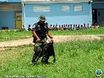 K9 officers did a demonstration in Ulla Muller and Gladys Abraham Schools